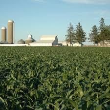 کارشناس رسمی دادگستری کشاورزی و منابع طبیعی